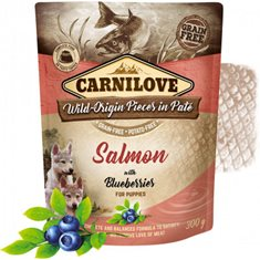 Carnilove Dog Pouch Salmon with Blueberries for Puppies Paté